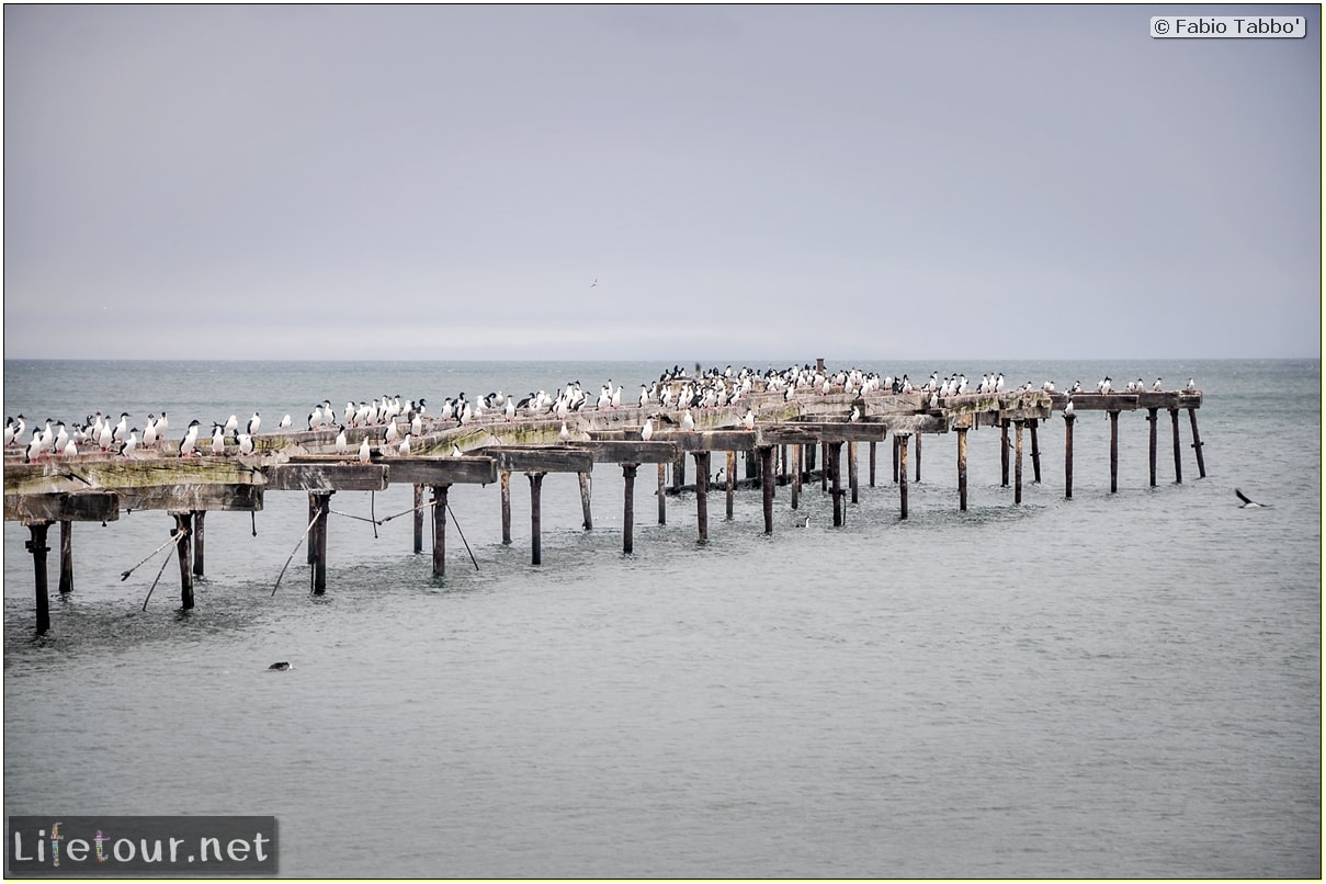 Fabio_s-LifeTour---Chile-(2015-September)---Punta-Arenas---Plaza-Fundacional-(waterfront)---5365