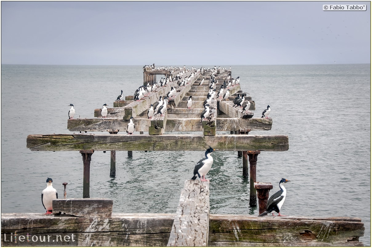 Fabio_s-LifeTour---Chile-(2015-September)---Punta-Arenas---Plaza-Fundacional-(waterfront)---5769