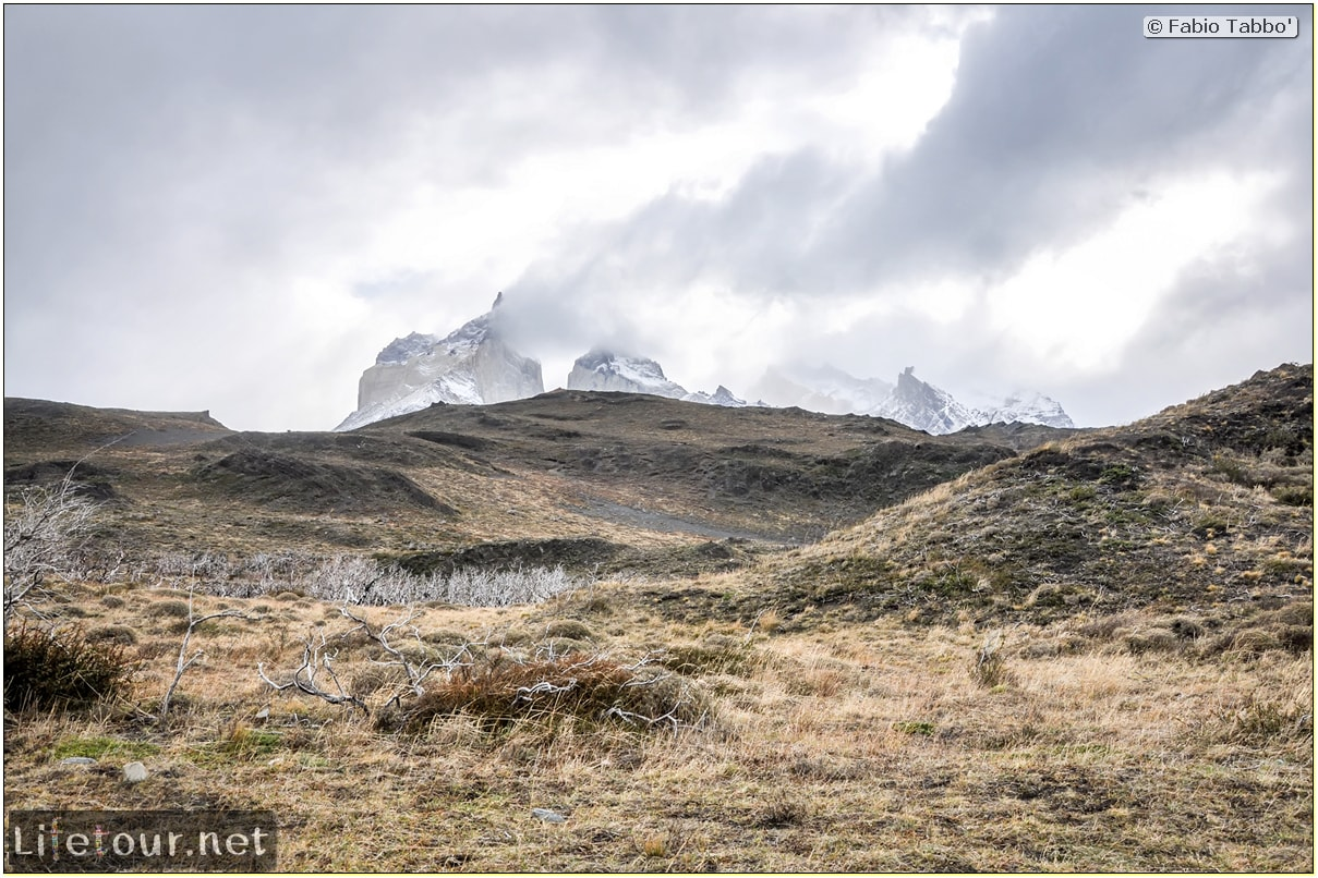 Fabio_s-LifeTour---Chile-(2015-September)---Torres-del-Paine---Ghost-forest---11758