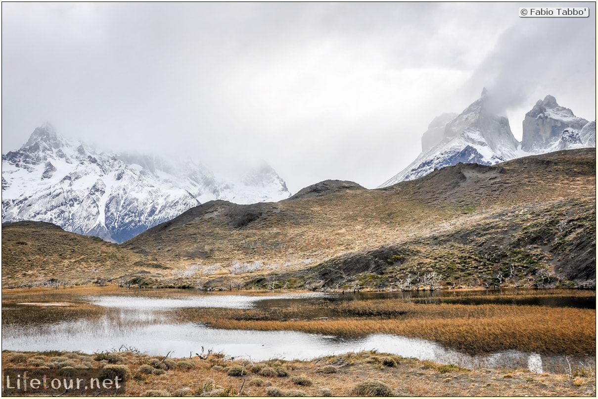 Fabio_s-LifeTour---Chile-(2015-September)---Torres-del-Paine---Ghost-forest---11902