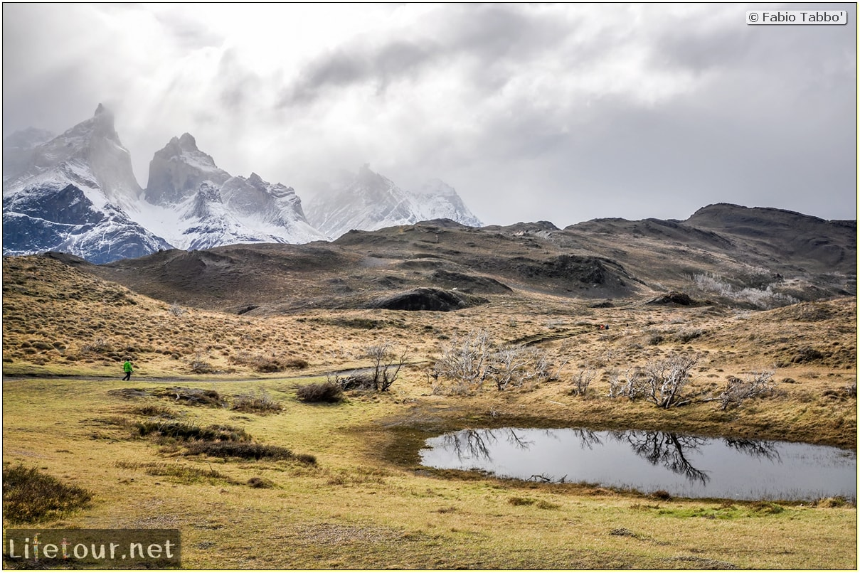 Fabio_s-LifeTour---Chile-(2015-September)---Torres-del-Paine---Ghost-forest---12047