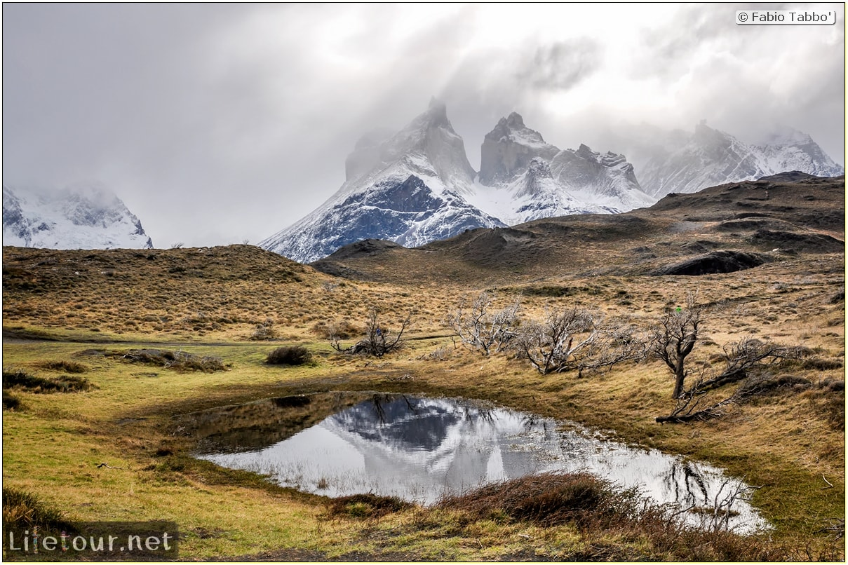 Fabio_s-LifeTour---Chile-(2015-September)---Torres-del-Paine---Ghost-forest---12055 cover