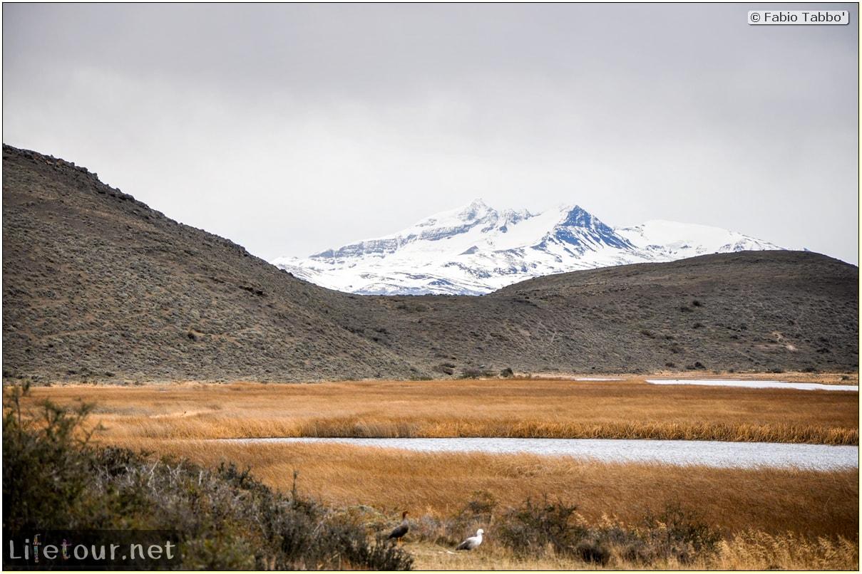 Fabio_s-LifeTour---Chile-(2015-September)---Torres-del-Paine---Lama-Crossing---11318