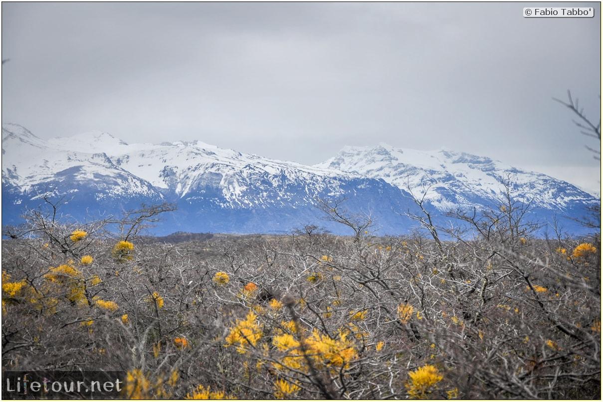 Fabio_s-LifeTour---Chile-(2015-September)---Torres-del-Paine---Other-pictures-trekking-Torres-del-Paine---3550