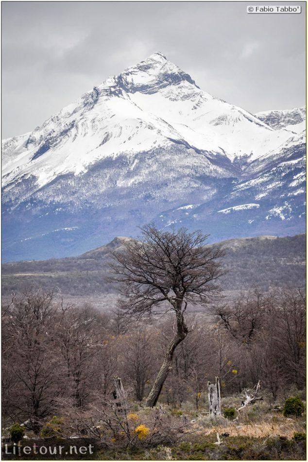 Fabio_s-LifeTour---Chile-(2015-September)---Torres-del-Paine---Other-pictures-trekking-Torres-del-Paine---7493
