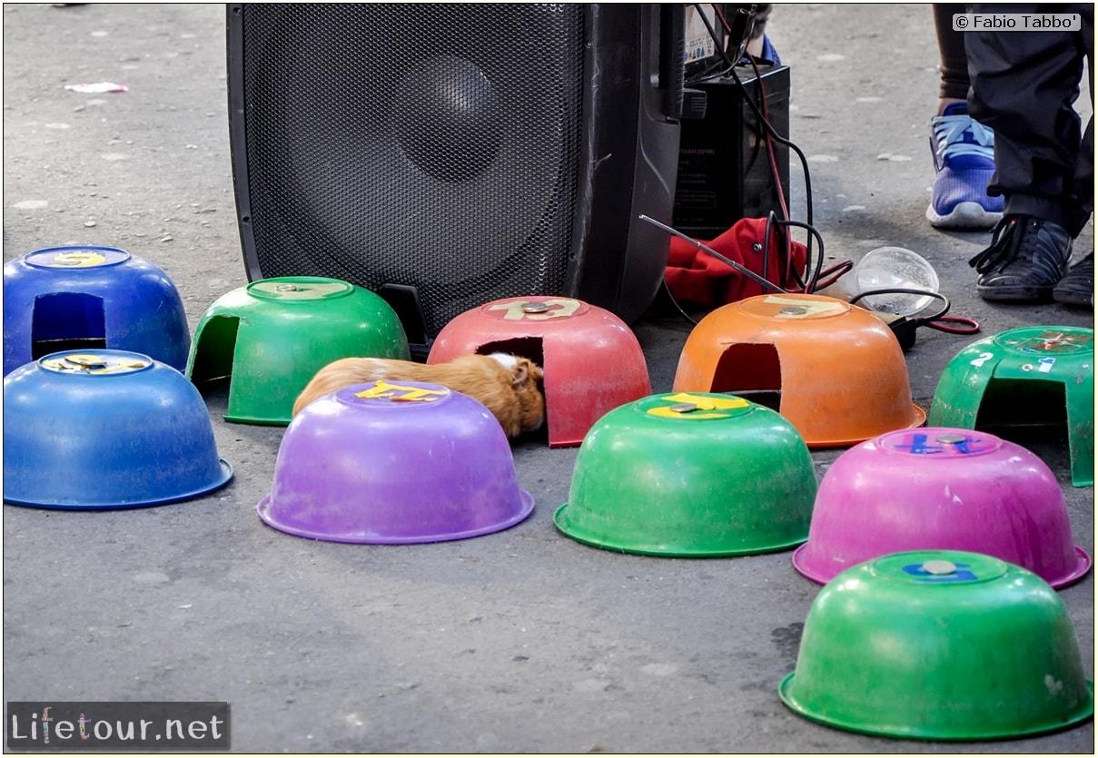 Fabio_s-LifeTour---Colombia-(2015-January-February)---Bogota_---Candelaria---Street-entertainment-in-Bogot…---10526