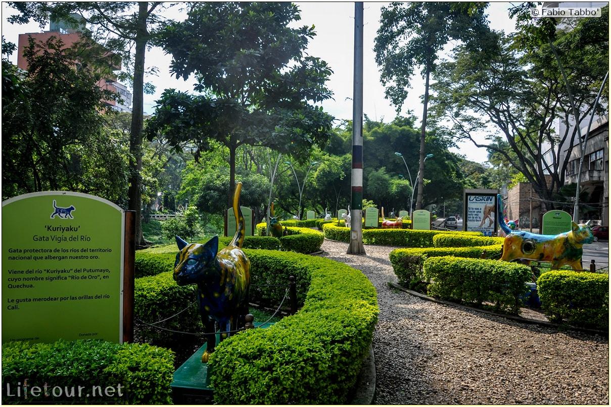 Fabio_s-LifeTour---Colombia-(2015-January-February)---Cali---Parque-El-Gato-de-Tejada---2185