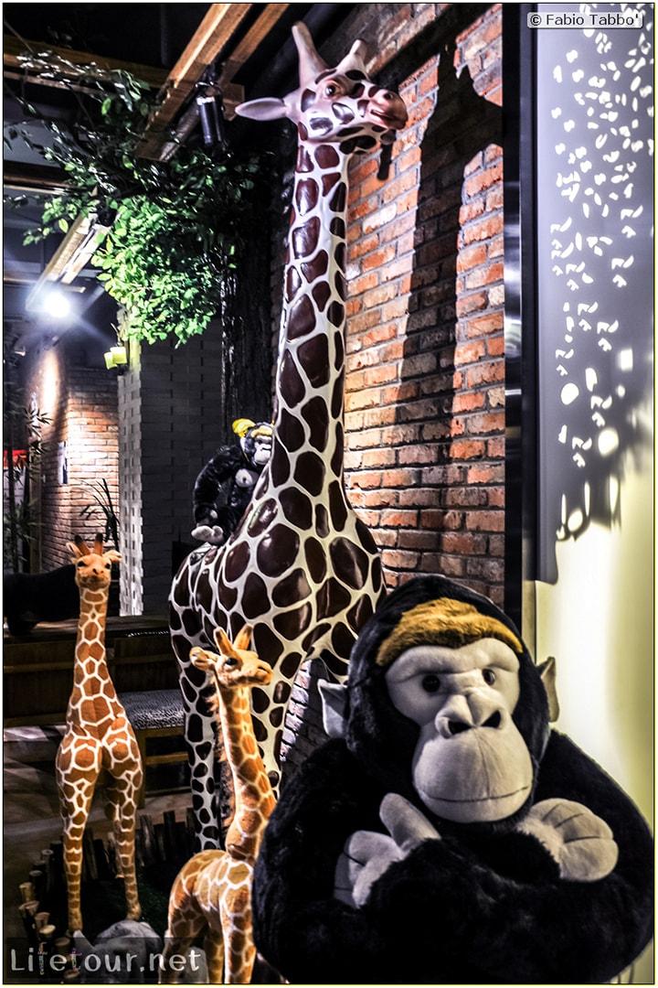 Fabio's LifeTour - China (1993-1997 and 2014) - Harbin (2014) - Zoo cafe - 7108 COVER