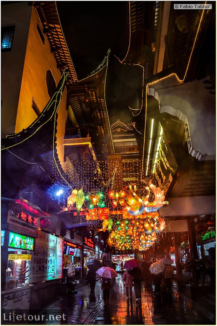 Fabio's LifeTour - China (1993-1997 and 2014) - Shanghai (1993 and 2014) - Tourism - Yuyuan Garden - 5969