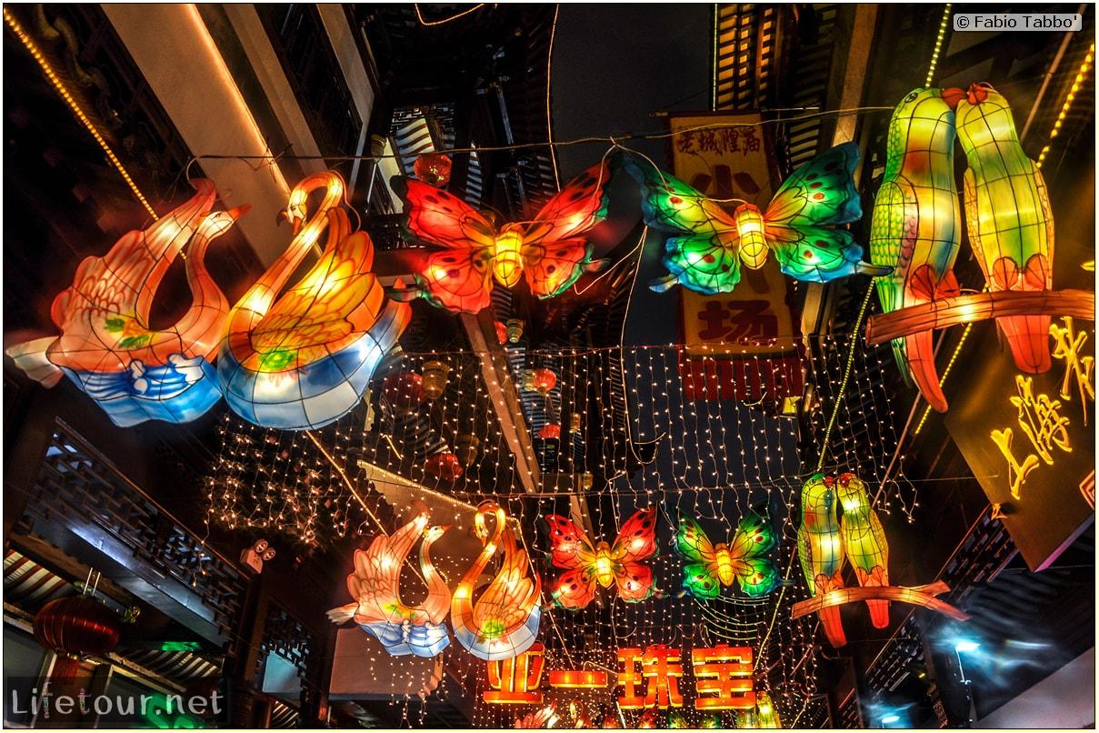 Fabio's LifeTour - China (1993-1997 and 2014) - Shanghai (1993 and 2014) - Tourism - Yuyuan Garden - 6078