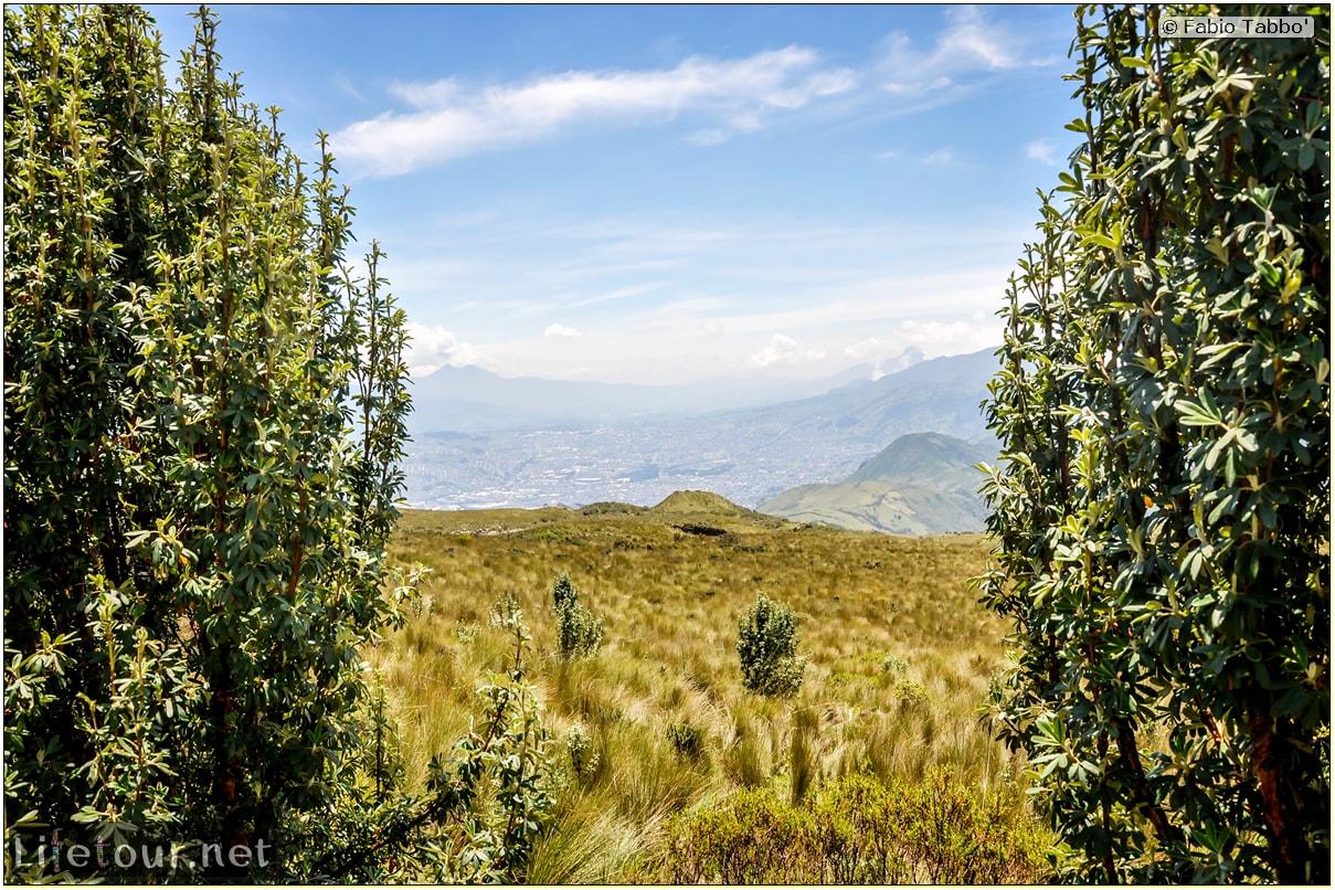 Fabio_s-LifeTour---Ecuador-(2015-February)---Quito---Teleferico---4--Trekking---12401