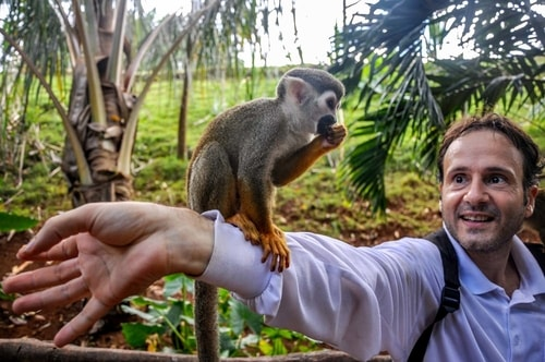 Dominican-Republic-Sosua-Monkey-Jungle-Monkey-Feeding-10387 COVER