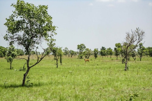 Ghana -Volta Region-Shai Hills-885 COVER