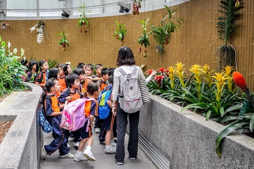 Hong-Kong-Tourism-Botanical-Garden-7784 COVER