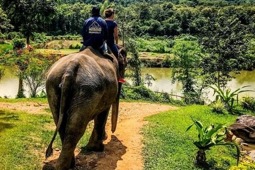 Laos-Luang-Prabang-Tourism-Elephant-Village-Elephant-riding-18844 COVER