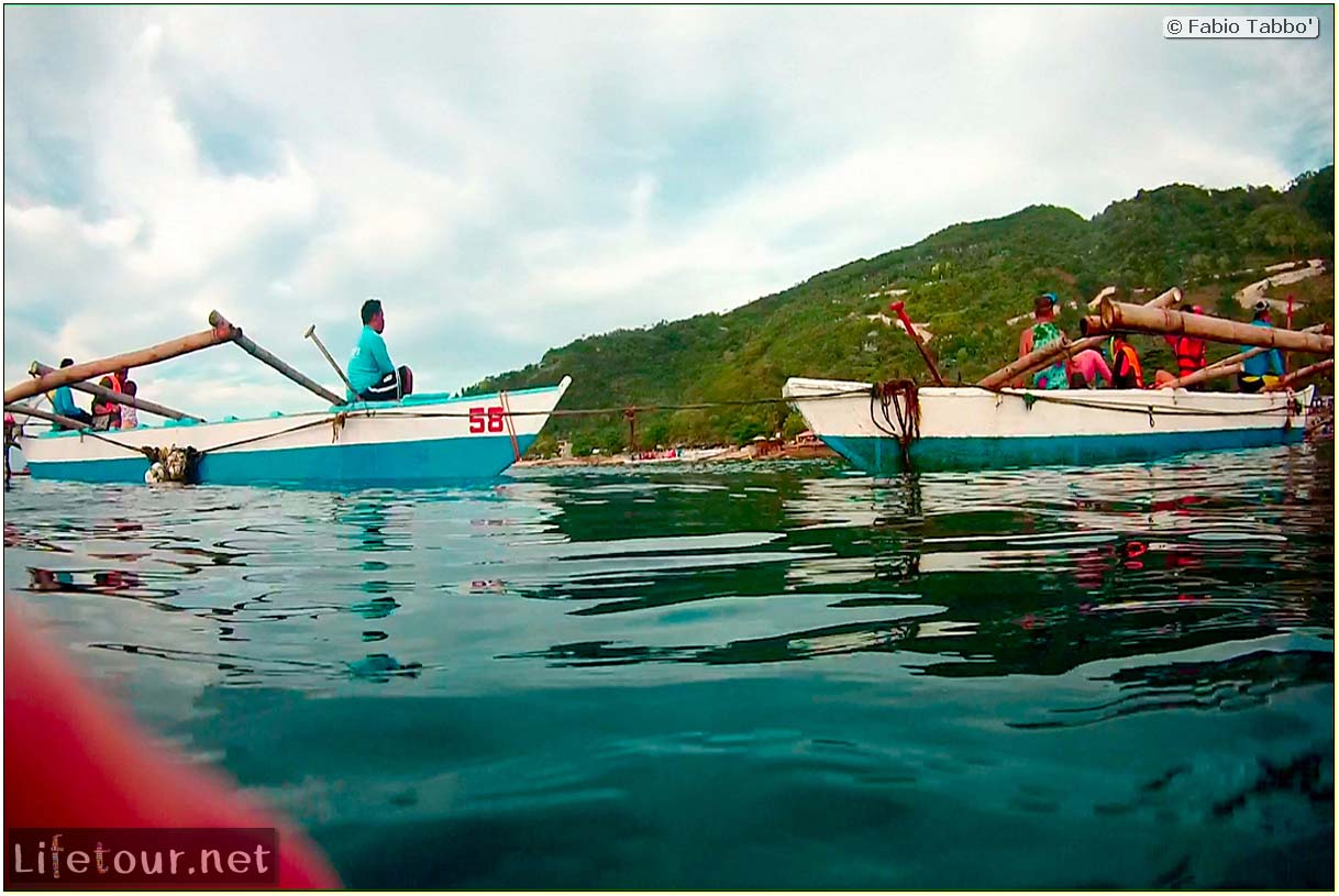 Cebu-Island-Oslob-Scuba-Diving-with-whale-sharks-Scuba-diving-with-whale-sharks-7