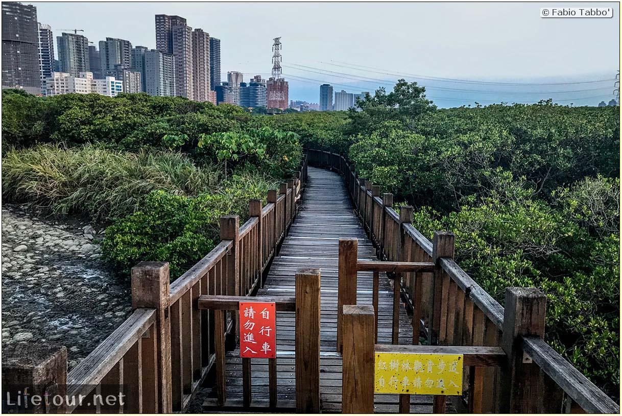 Taiwan 2018-New Taipei City-Hongshulin Mangrove Ecowalk-51
