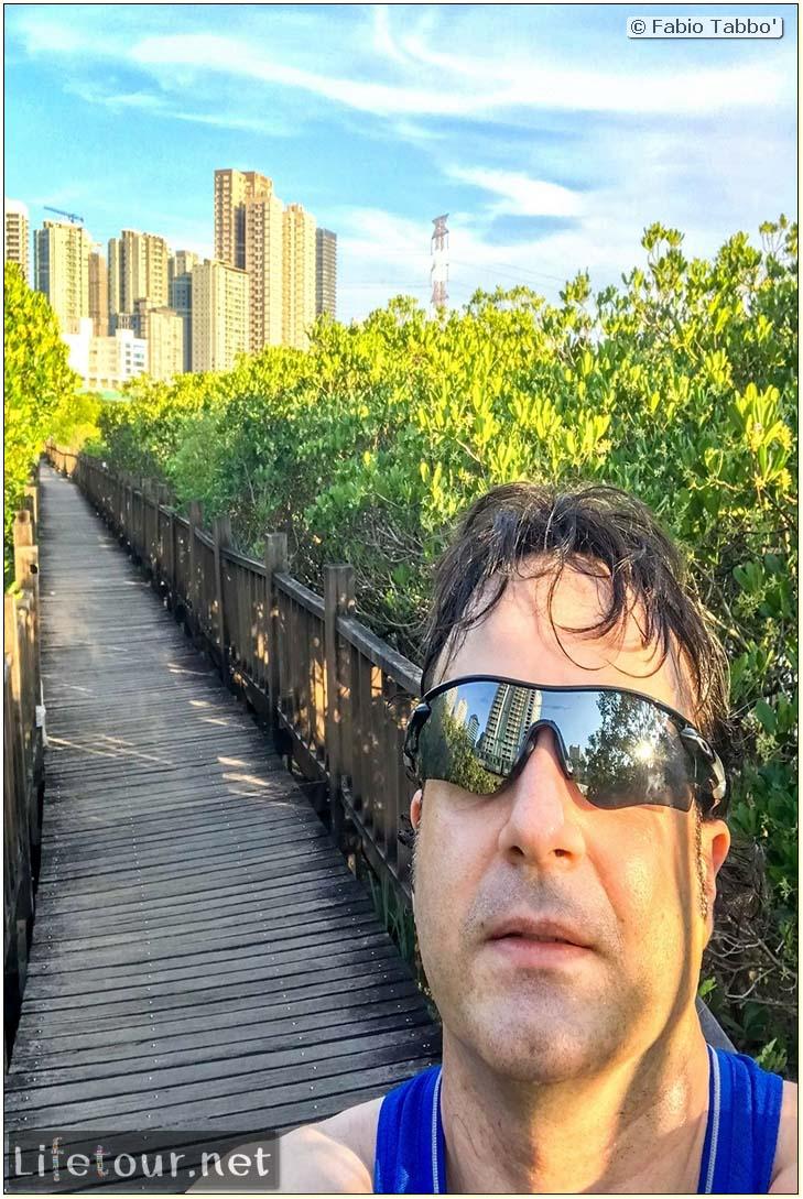 Taiwan 2018-New Taipei City-Hongshulin Mangrove Ecowalk-53