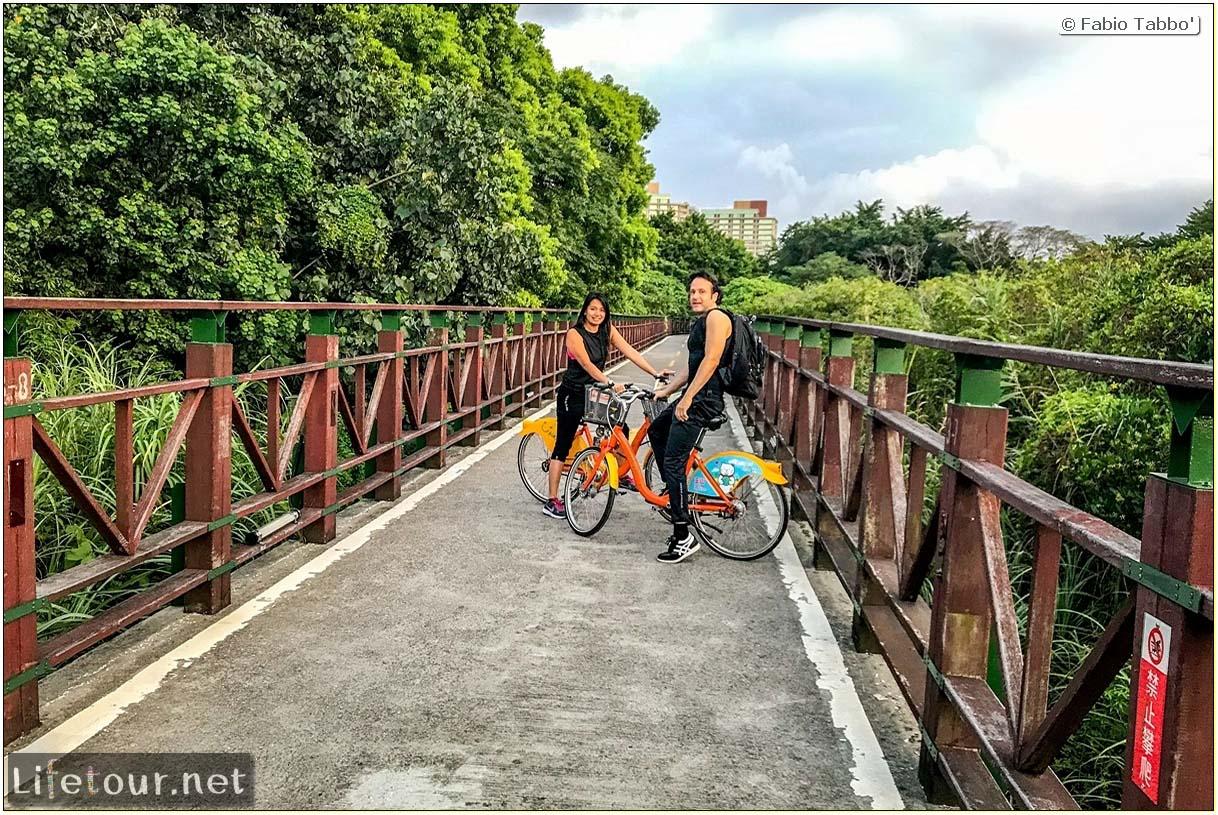 Taiwan 2018-New Taipei City-Hongshulin Mangrove Ecowalk-55