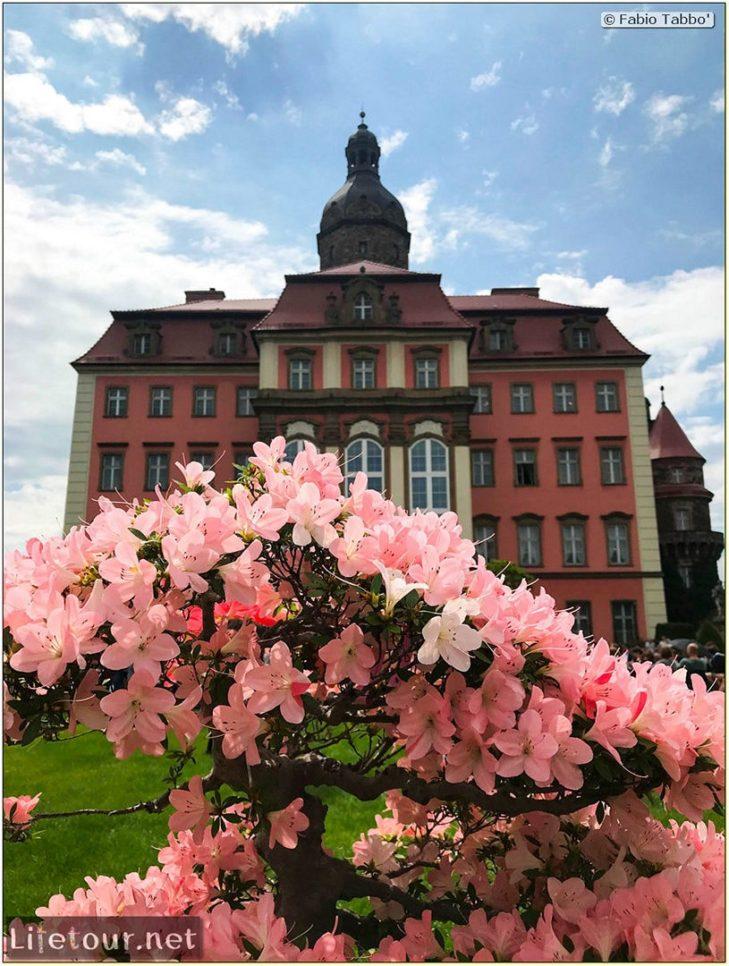 Poland 2019-2020 - Wroclaw 2019 03- - Ksiaz Castle - 7