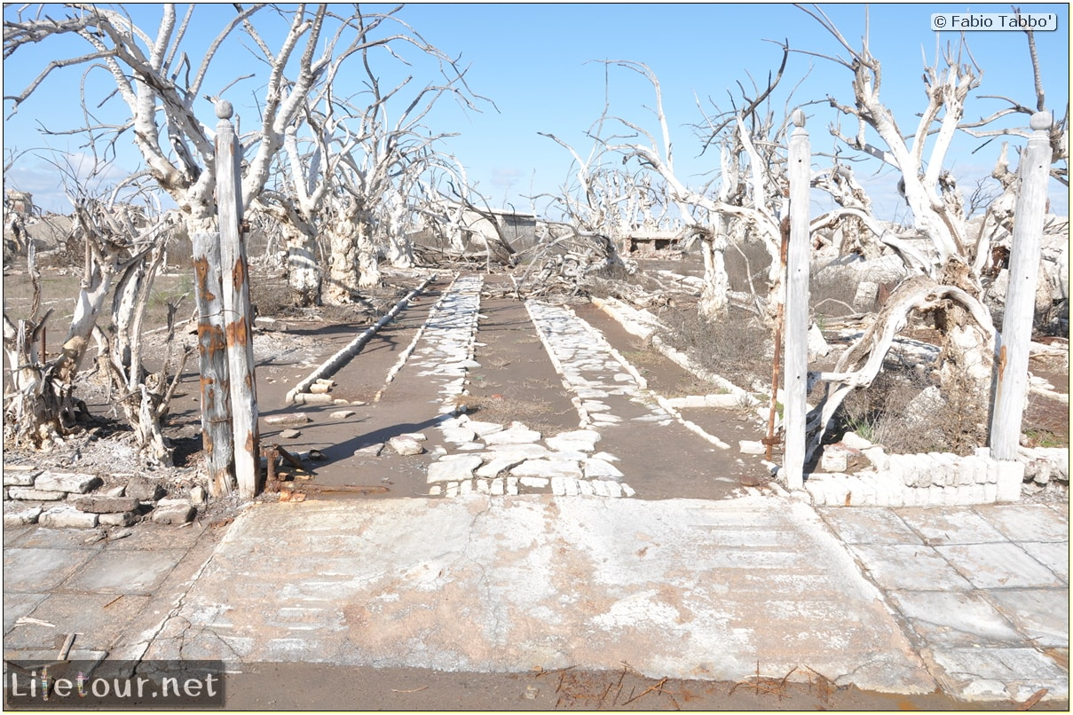 Fabios-LifeTour-Argentina-2015-July-August-Epecuen-Epecuen-ghost-town-3.-Epecuen-Ghost-town-10357
