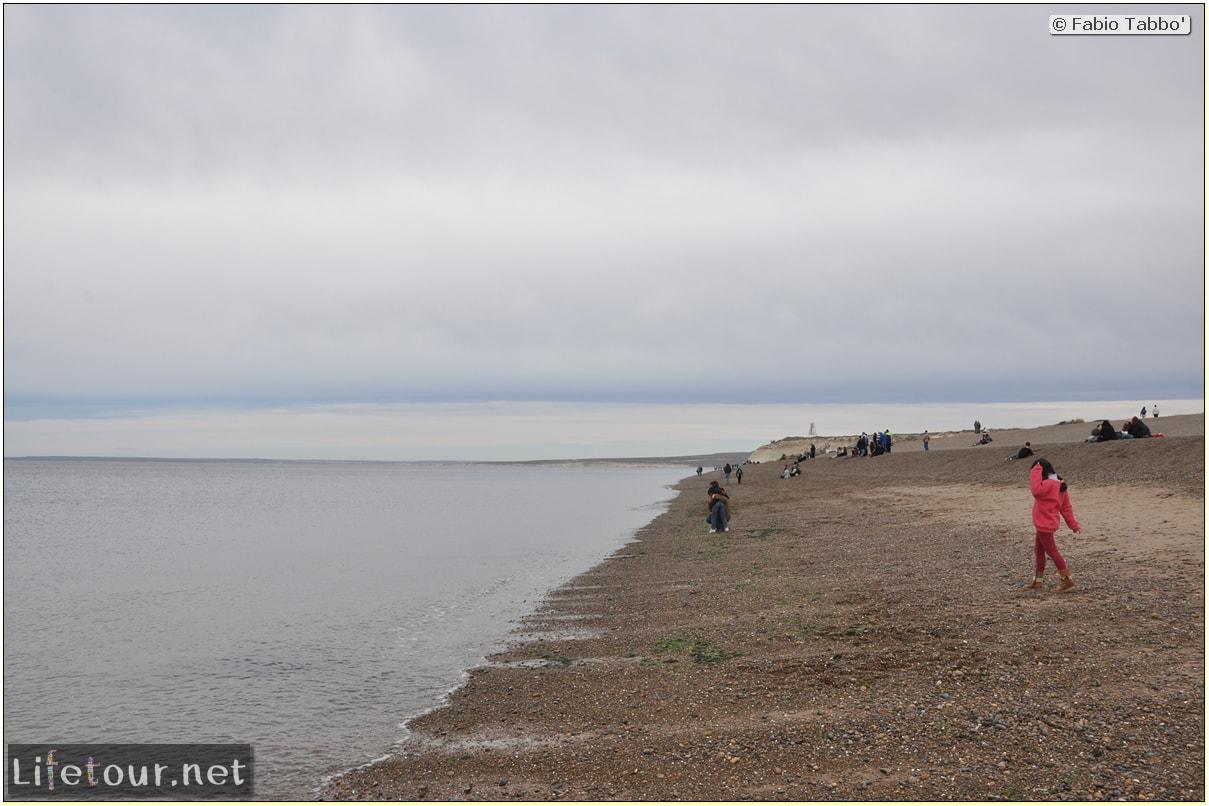 Fabios-LifeTour-Argentina-2015-July-August-Puerto-Madryn-El-Doradillo-whale-watching-2.-El-Doradillo-whale-watching-2407