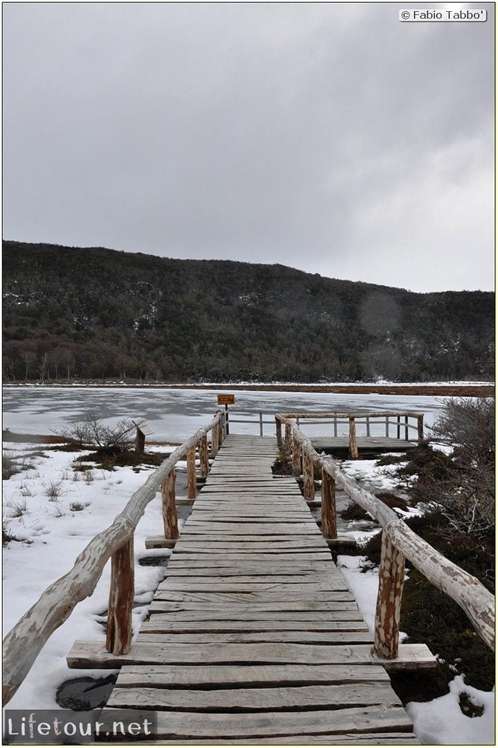 Fabios-LifeTour-Argentina-2015-July-August-Ushuaia-Parque-Tierra-del-Fuego-4-Erratic-trekking-6090-cover