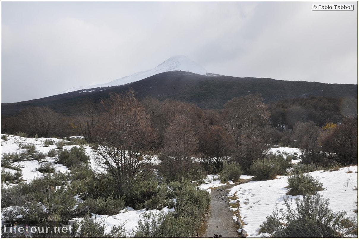 Fabios-LifeTour-Argentina-2015-July-August-Ushuaia-Parque-Tierra-del-Fuego-4-Erratic-trekking-in-Tierra-del-Fuego-5540