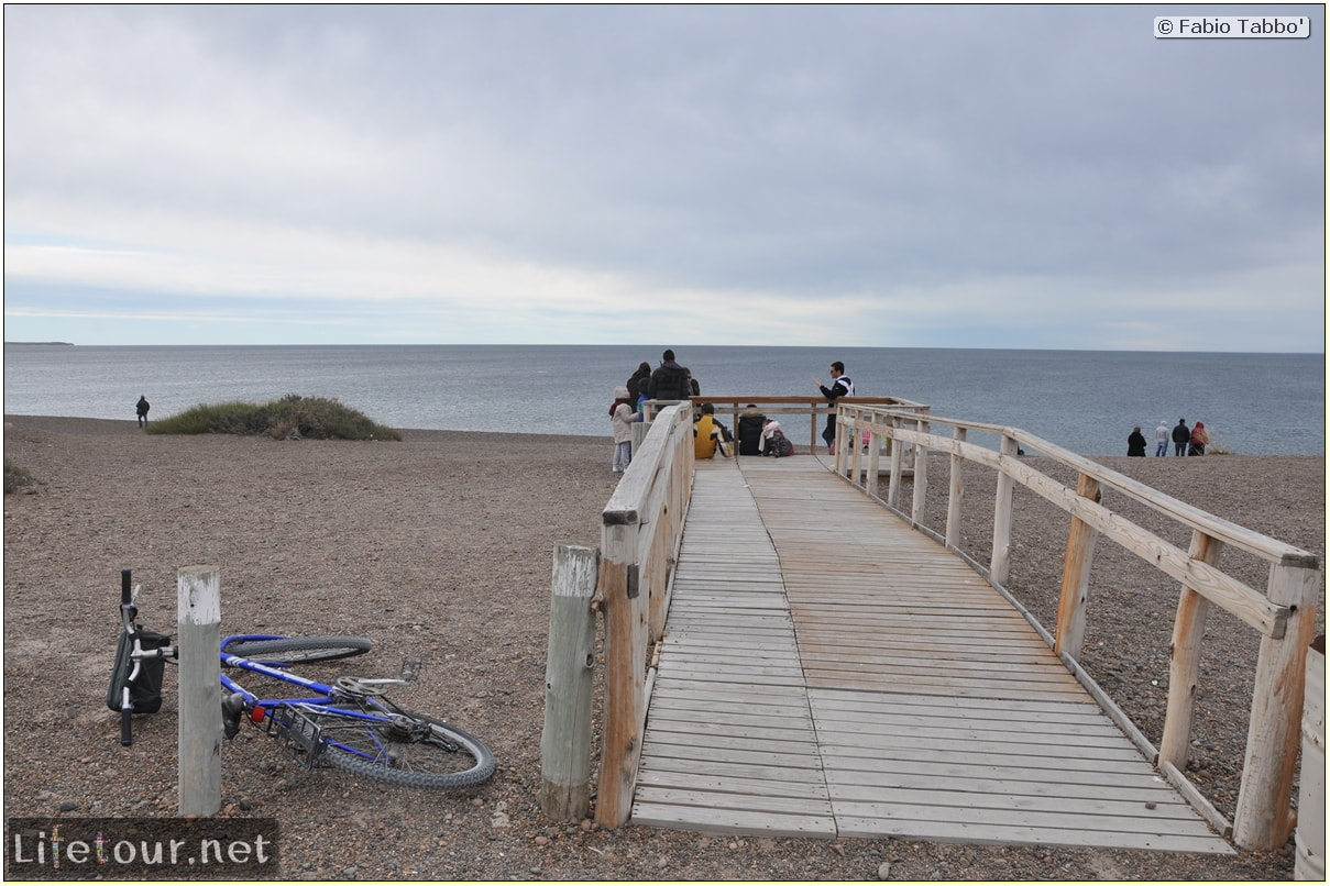 Puerto-Madryn-El-Doradillo-whale-watching-1.-Bicycle-trip-to-El-Doradillo-1178
