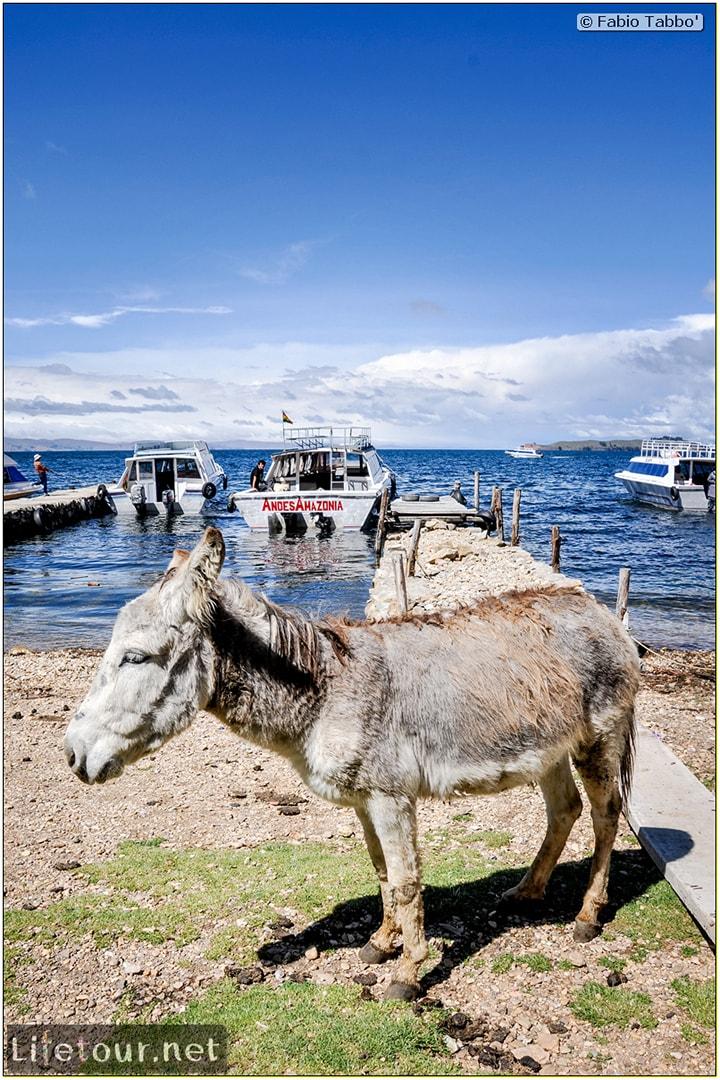 Fabio_s-LifeTour---Bolivia-(2015-March)---Titicaca---Titicaca-Lake---1.-Isla-del-sol---6050