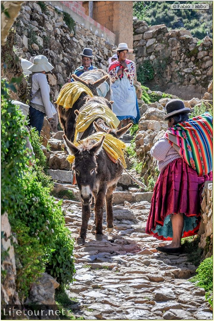 Fabio_s-LifeTour---Bolivia-(2015-March)---Titicaca---Titicaca-Lake---1.-Isla-del-sol---6425