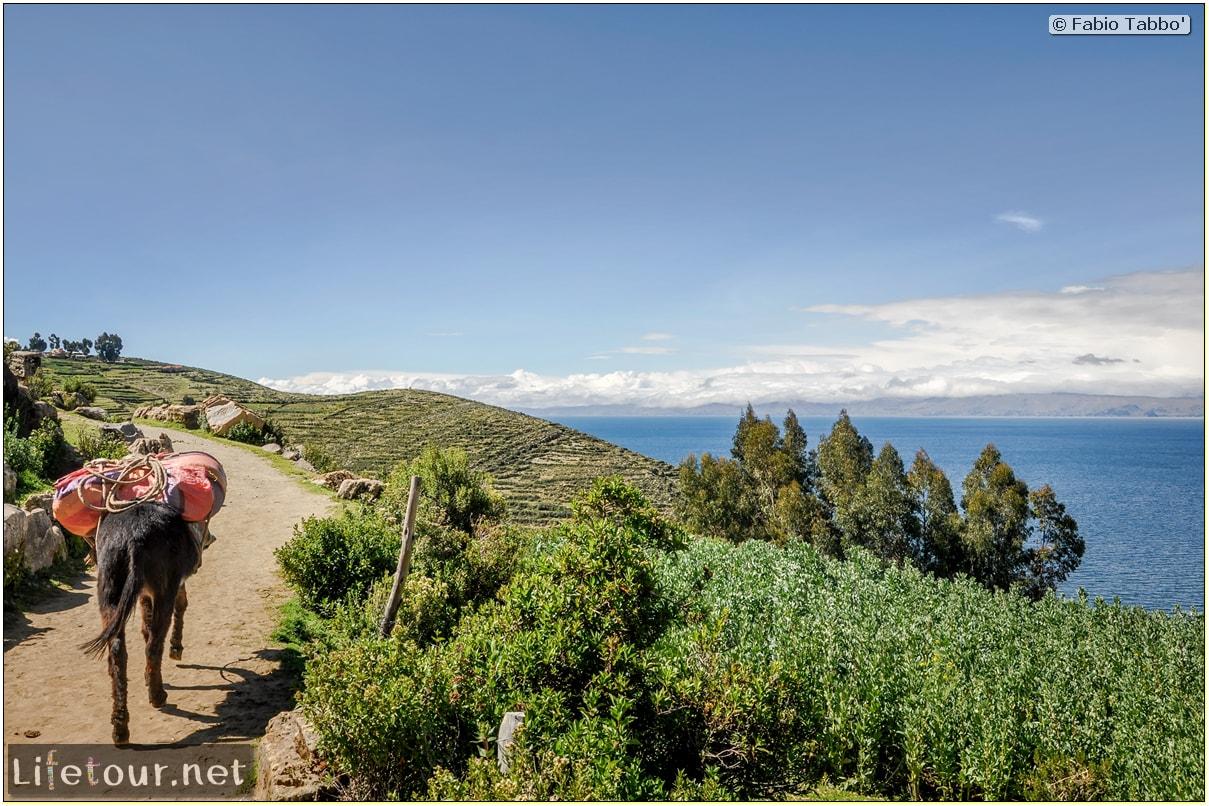 Fabio_s-LifeTour---Bolivia-(2015-March)---Titicaca---Titicaca-Lake---1.-Isla-del-sol---7286