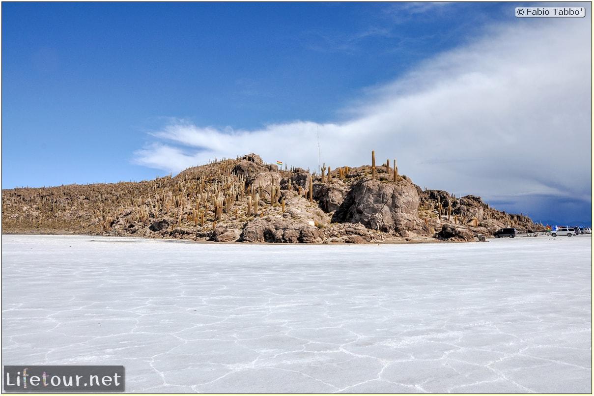 Fabio_s-LifeTour---Bolivia-(2015-March)---Ujuni---Salar-de-Ujuni---4--Incahuasi-Island-(Isla-de-los-Pescados)---11149