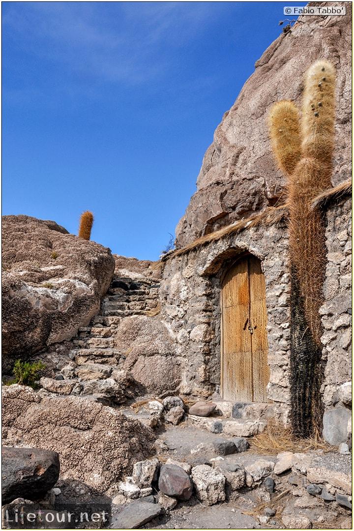 Fabio_s-LifeTour---Bolivia-(2015-March)---Ujuni---Salar-de-Ujuni---4--Incahuasi-Island-(Isla-de-los-Pescados)---11413