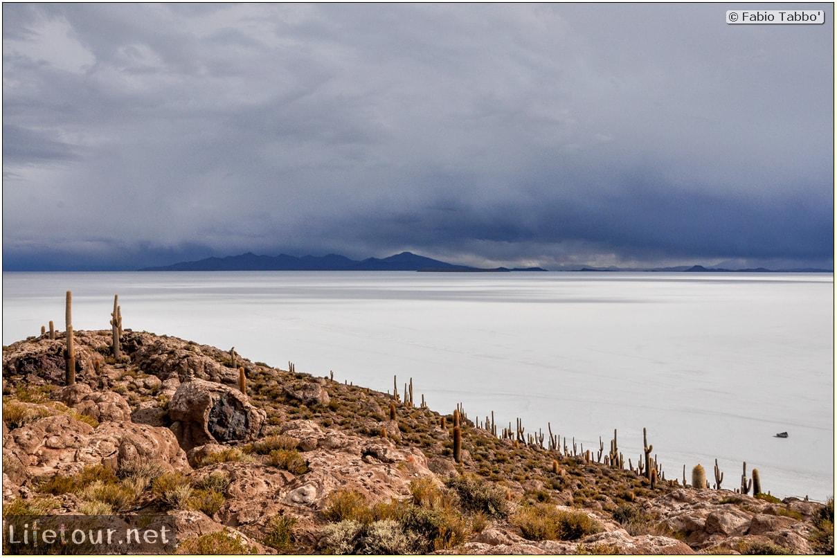 Fabio_s-LifeTour---Bolivia-(2015-March)---Ujuni---Salar-de-Ujuni---4--Incahuasi-Island-(Isla-de-los-Pescados)---11932
