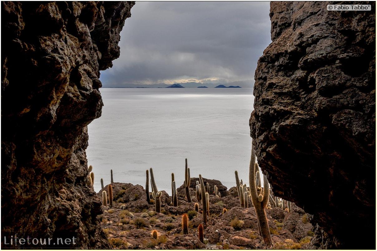 Fabio_s-LifeTour---Bolivia-(2015-March)---Ujuni---Salar-de-Ujuni---4--Incahuasi-Island-(Isla-de-los-Pescados)---11961-cover