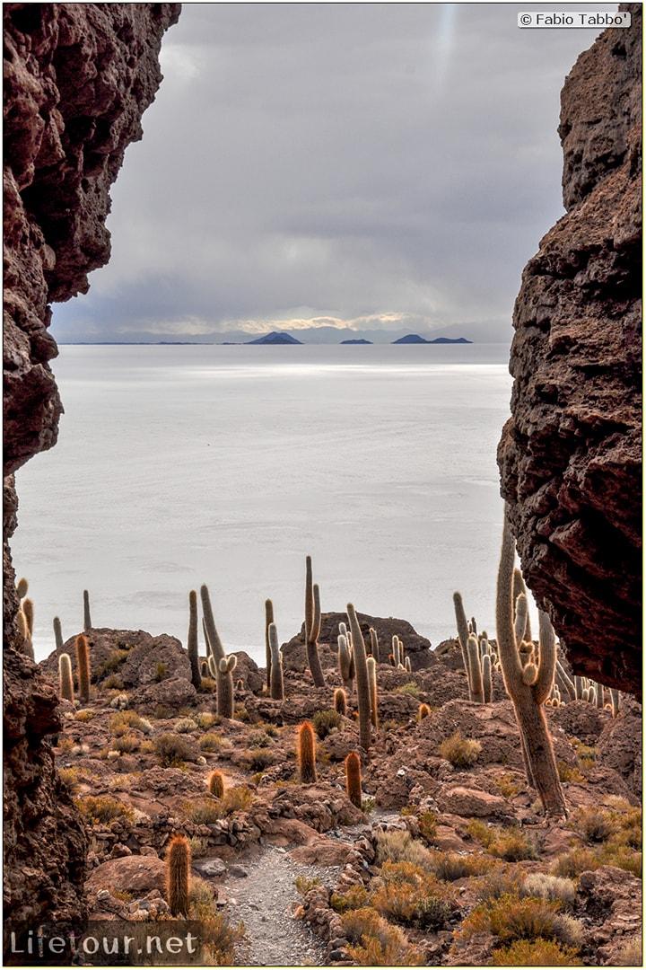 Fabio_s-LifeTour---Bolivia-(2015-March)---Ujuni---Salar-de-Ujuni---4--Incahuasi-Island-(Isla-de-los-Pescados)---cover