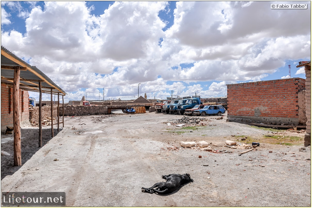 Fabio_s-LifeTour---Bolivia-(2015-March)---Ujuni---city---5498