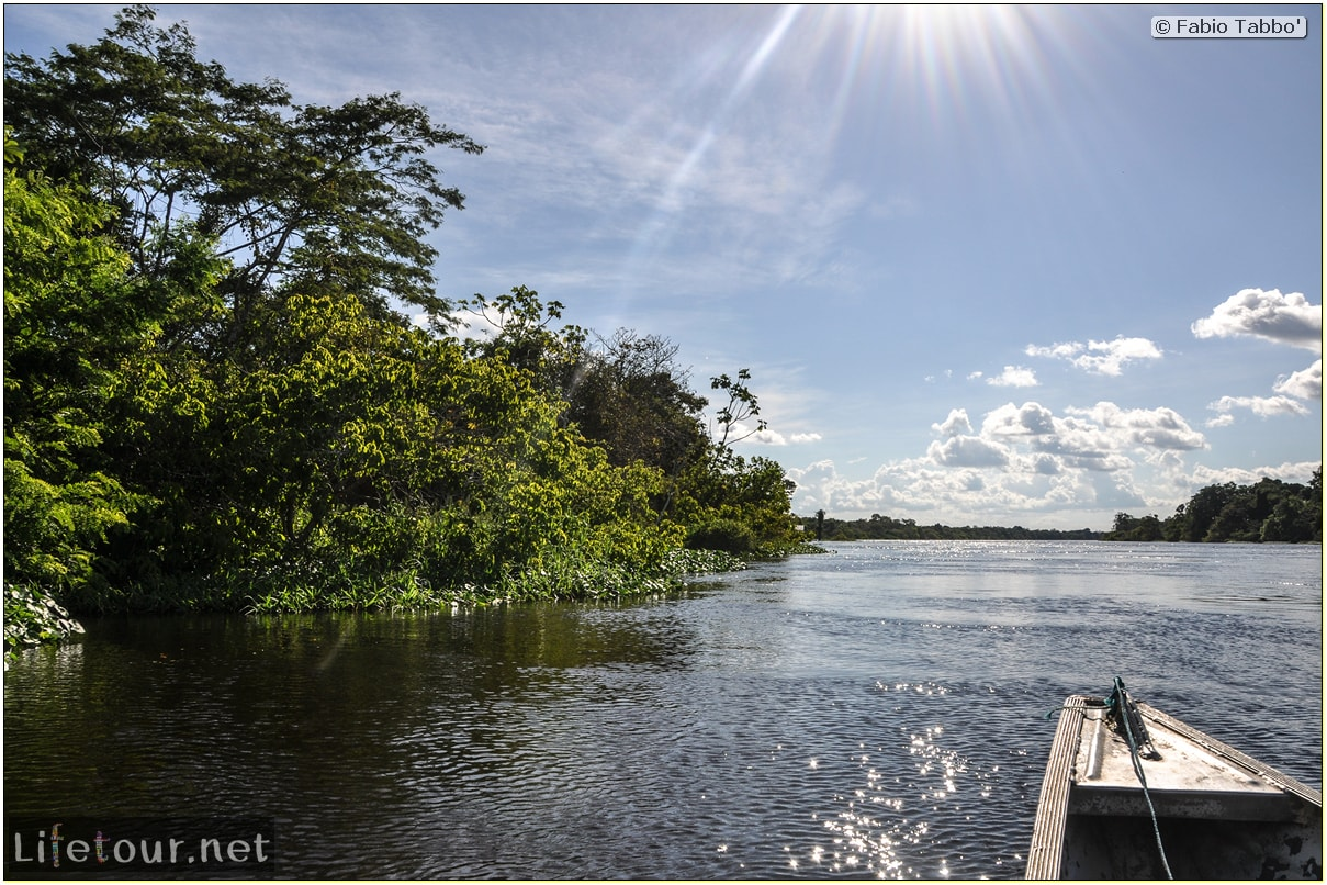 Fabio's LifeTour - Brazil (2015 April-June and October) - Manaus - Amazon Jungle - Piranha fishing - 8768