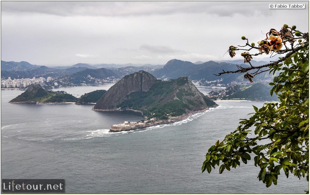 Brazil (2015) - Rio De Janeiro - Trilha Do P¦o De Açúcar - 4- on top of the mountain - 9550
