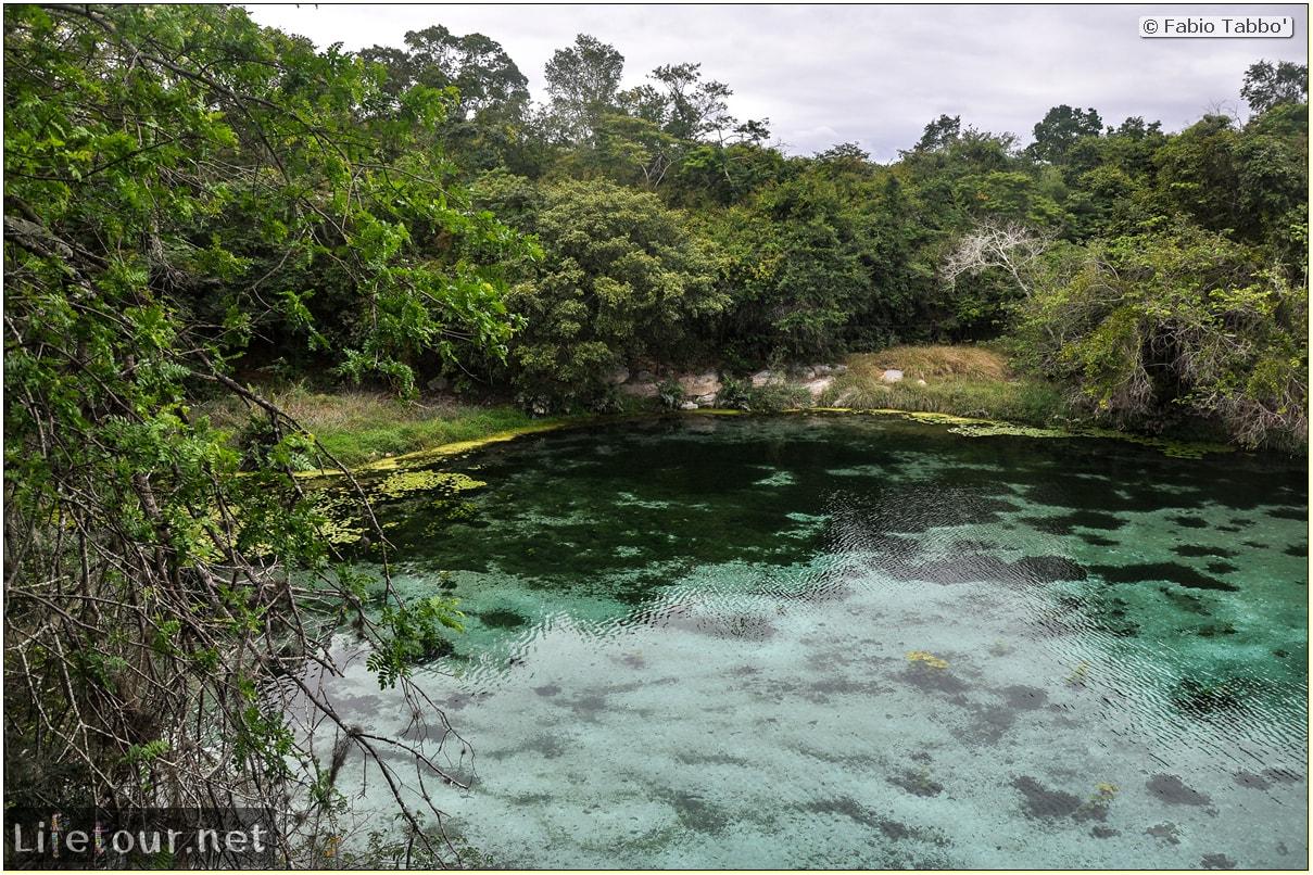 Fabio's LifeTour - Brazil (2015 April-June and October) - Chapada Diamantina - National Park - 3- Pratinha Grotto and lagoon - 9170