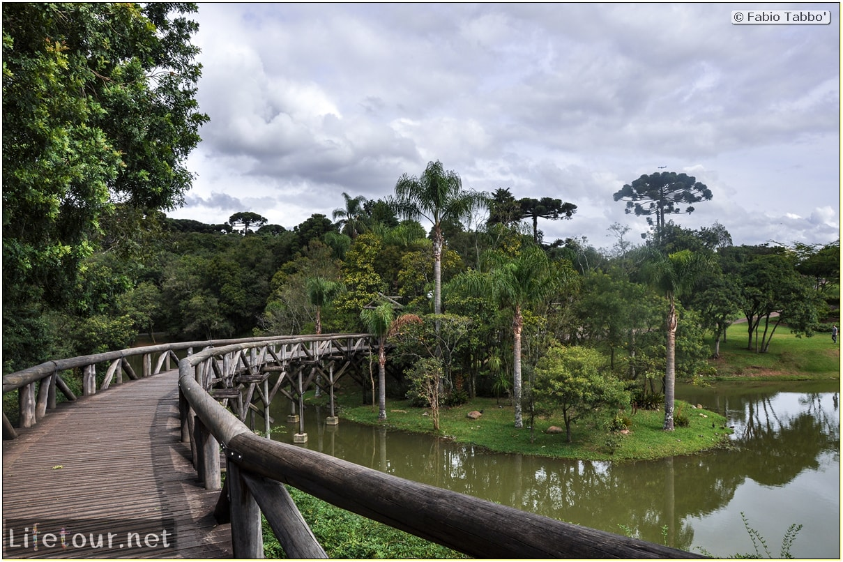 Fabio's LifeTour - Brazil (2015 April-June and October) - Curitiba - Botanical garden - 2065