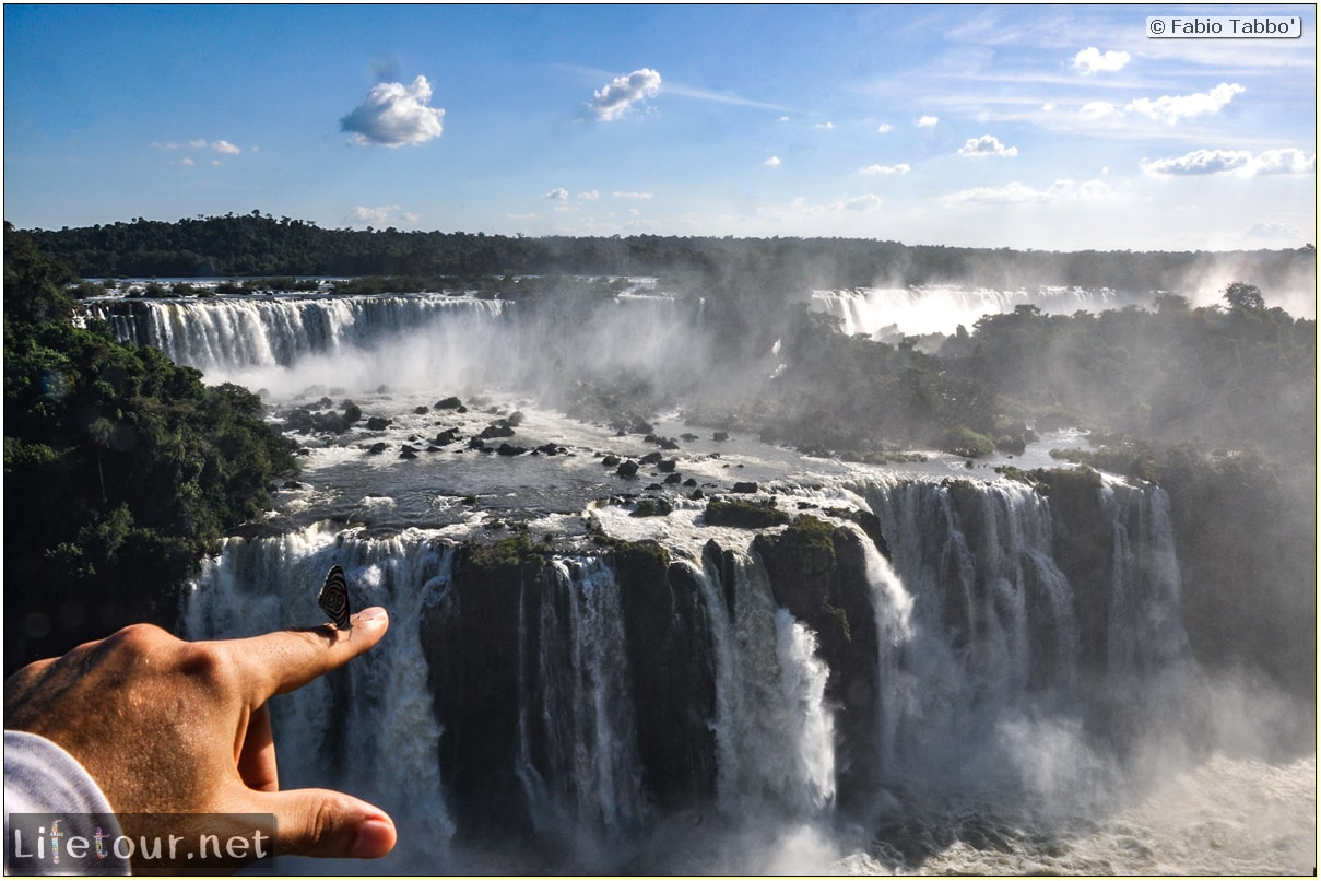 Fabio's LifeTour - Brazil (2015 April-June and October) - Iguazu falls - The butterflies - 6048 cover