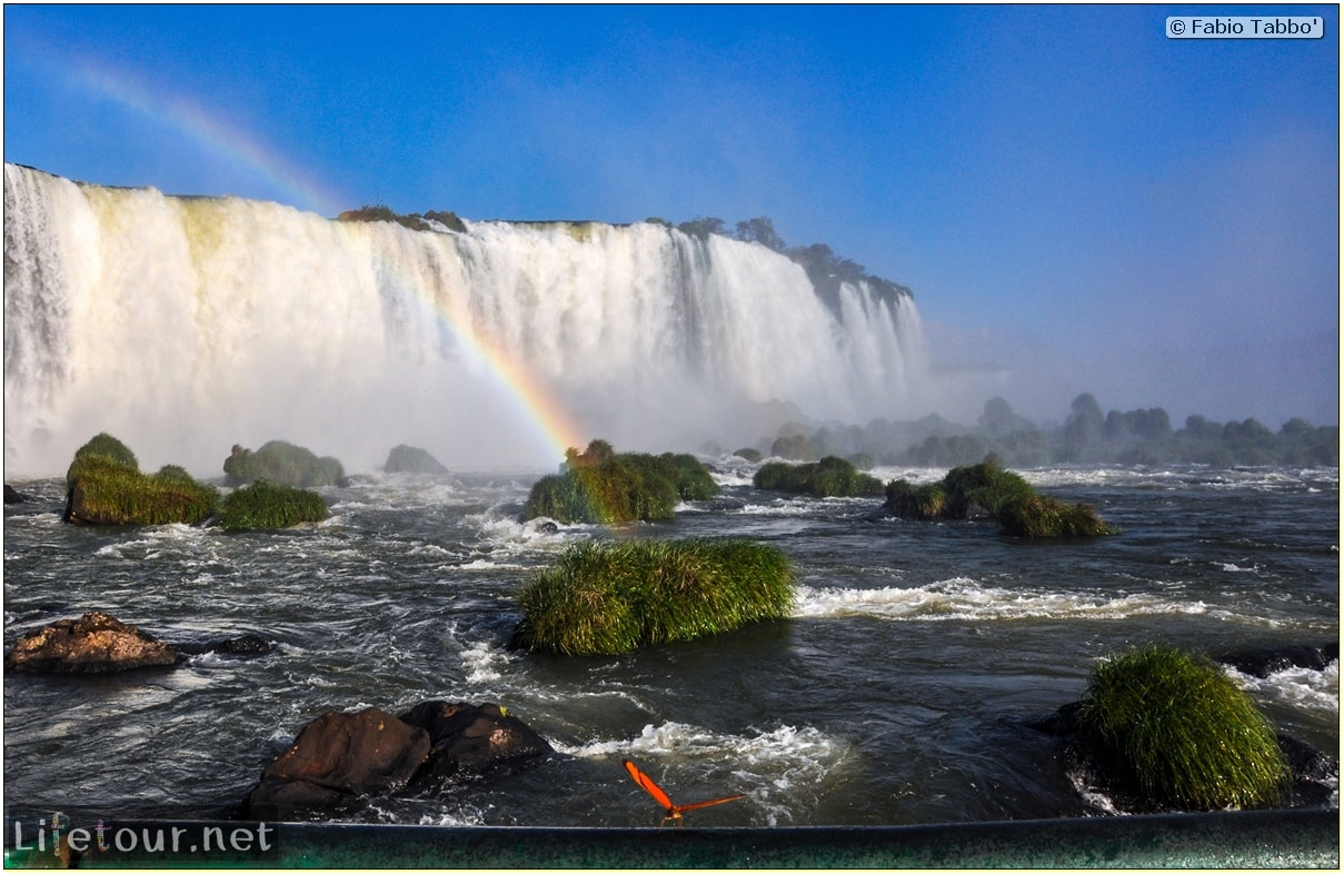 Fabio's LifeTour - Brazil (2015 April-June and October) - Iguazu falls - The butterflies - 8392 cover