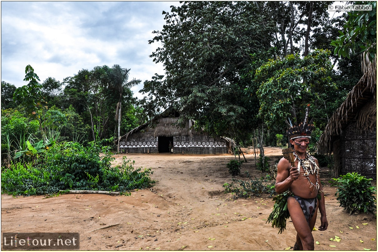 Fabio's LifeTour - Brazil (2015 April-June and October) - Manaus - Amazon Jungle - Indios village - 1- The village - 9385 cover