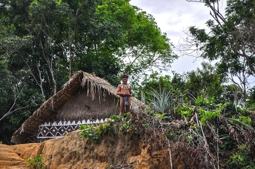 Fabio's LifeTour - Brazil (2015 April-June and October) - Manaus - Amazon Jungle - Indios village - 1- The village - 9672 cover