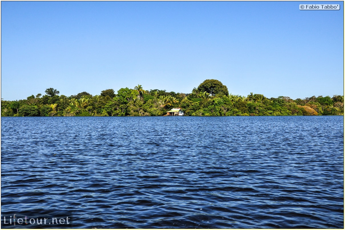 Fabio's LifeTour - Brazil (2015 April-June and October) - Manaus - Amazon Jungle - Jungle trekking - 1-boat trip - 8699 cover