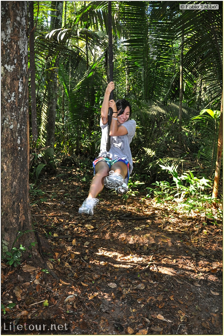 Fabio's LifeTour - Brazil (2015 April-June and October) - Manaus - Amazon Jungle - Jungle trekking - 4- Tarzan swinging - 9553