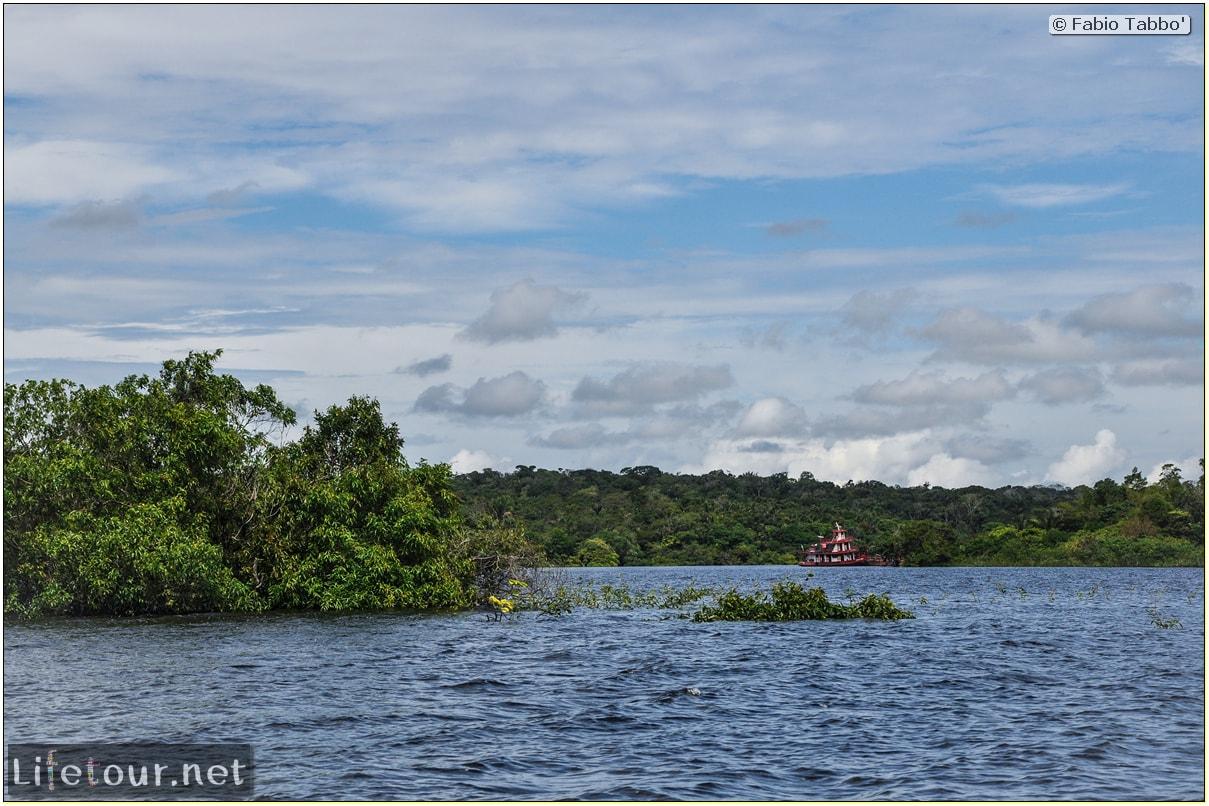 Fabio's LifeTour - Brazil (2015 April-June and October) - Manaus - Amazon Jungle - Parque do Janauary - 1-trip (Rio Solimoes) - 10067