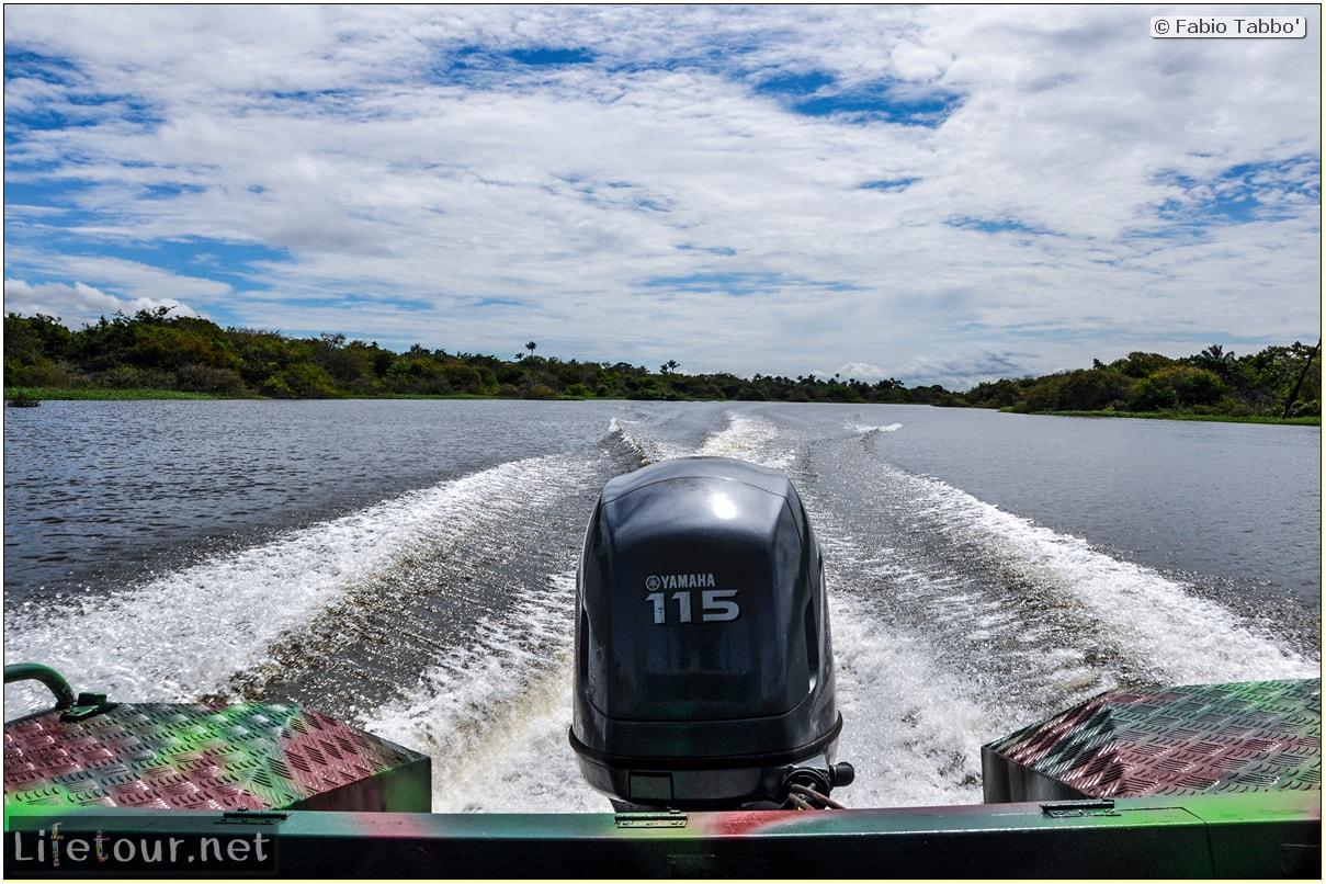 Fabio's LifeTour - Brazil (2015 April-June and October) - Manaus - Amazon Jungle - Parque do Janauary - 1-trip (Rio Solimoes) - 10354